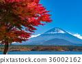 富士山 36002162