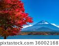 富士山 36002168