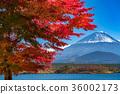 富士山 36002173