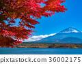 富士山 36002175