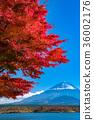 富士山 36002176
