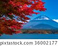 富士山 36002177