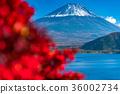 富士山 36002734