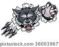 Wolf Baseball Mascot Breaking Background 36003967