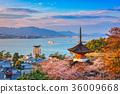 Miyajima, Hiroshima, Japan 36009668