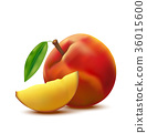 Realistic Detailed 3d Whole Peach Fruit and Slice 36015600