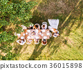 Wedding reception outside in the backyard. 36015898