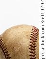 공, 야구, 코시엔 36019292