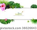 tropical, leaves, frame 36026643
