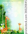 animal vectors summer backgrounds 36026645