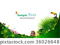 Tropical island spring of beautiful plants green. 36026648