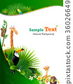 animal, animals, flower 36026649