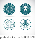 Set of vector octopus seafood labels. Animal 36031820
