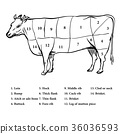 Illustration of Beef cutting up diagram - Vector  36036593