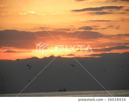 日落 夕阳 暮色 36038916