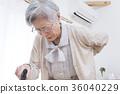 female, lady, woman 36040229
