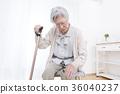 female, lady, woman 36040237