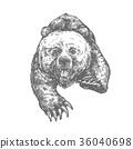 동물, 벡터, 짐승 36040698
