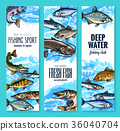 Fresh fish banner for seafood and fishing design 36040704