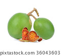 Aegle marmelos and Dry bael fruit on white  36043603
