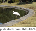 Kojiki来到Inage Park 36054026