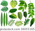 Summer, spring leaves set. Green flat icon. vector 36055165