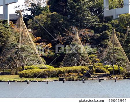 yukitsuri, chiba park, november 36061945