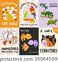 Pets Posters And Banners Set 36064509
