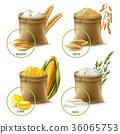 穀類 農業的 一組 36065753
