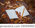 Book and pencil on a bench in autumn leaves view 36069966
