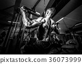 gym bodybuilder exercise 36073999