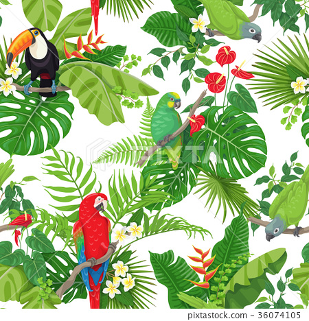 Tropical Birds and Flowers Pattern 36074105
