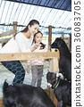 三十 黑 動物 36083705