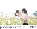 가을, 가을꽃, 가족 36083941