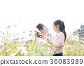 母亲,女儿,公园 36083989