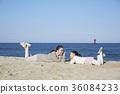 母親,女兒,旅行,海 36084233