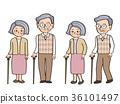 甘蔗 老人 人 36101497