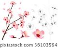 Momo Peach Flower Outline 36103594