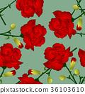 Red Carnation Flower on Green Background 36103610