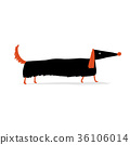 Cute dachshund dog, sketch for your design 36106014