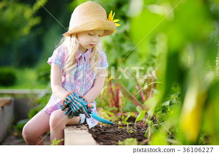 Adorable little girl wearing straw hat playing with her toy garden tools in a greenhouse 36106227
