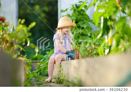 Adorable little girl wearing straw hat playing with her toy garden tools in a greenhouse 36106230