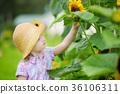 girl summer outdoor 36106311
