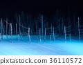 라이트 업 된 비 에이 백금 파란 연못 36110572