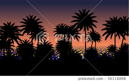 Sunset with palms 36118898