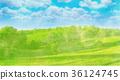 vector, nature, field 36124745