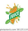 水果 果汁 向量 36125110