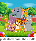 Wild animals in the forest 36127501