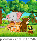 Wild animals in the forest 36127502