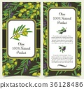 Set of banners with olive branches with berries 36128486